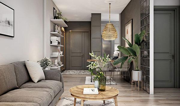 Thiết kế nội thất chung cư mini 30m2 - Ảnh 2